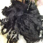 Feather Chenille Thread, Black Color, made in France