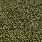 TOHO Round Seed Beads 15/0 Matte Color Dark Olive TR-15-617